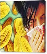 Hay Fever Canvas Print