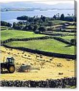 Hay Making, Lough Corrib, Co Galway Canvas Print
