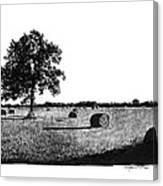 Hayfield Canvas Print