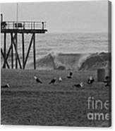 Hdr Black White Beach Beaches Ocean Sea Seaview Waves Pier Photos Pictures Photographs Photo Picture Canvas Print