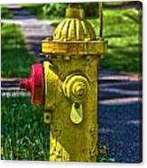 Hdr Fire Hydrant Canvas Print