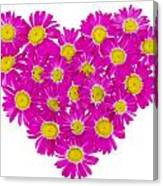 Heart From  Pink Daisies Canvas Print