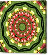 Heart Kaleidoscope Canvas Print