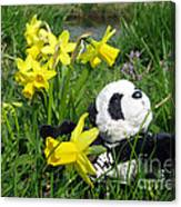 Hello Spring. Ginny From Travelling Pandas Series. Canvas Print