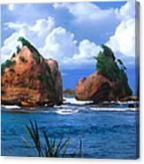 Hells Gate Rocks Near Calibishie Dominica Canvas Print