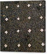 Herculaneum Floor Canvas Print