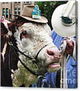Hereford Bull With Akubra Hat In Hyde Park Canvas Print