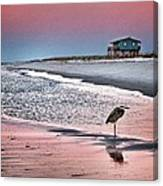 Heron And Beach House Canvas Print