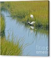 Heron Reflections Canvas Print