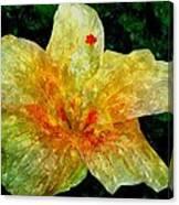 Hibiscus Hiwc Canvas Print