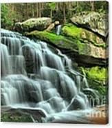 Hidden Elakala Falls Canvas Print