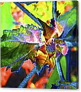 Hidden In Color Canvas Print