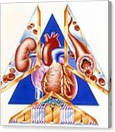 High Blood Pressure, Artwork Canvas Print