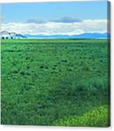 High Plains Spring Canvas Print