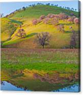 Hill Reflection In Pond Canvas Print