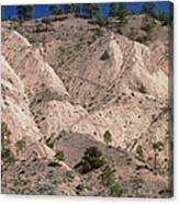 Hill Soil Erosion Caused By Over-grazing Canvas Print