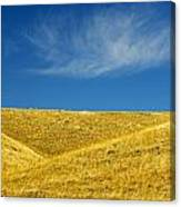 Hills And Clouds, Cypress Hills Canvas Print