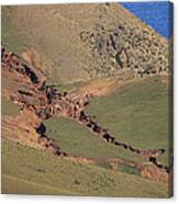 Hillside Erosion Caused By Run Canvas Print