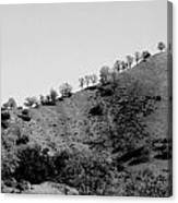 Hilltop In A Row - Black And White Canvas Print