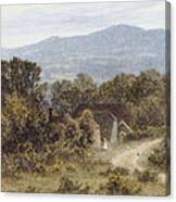 Hindhead From Sandhills Witley Canvas Print