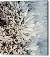 Hoar Frost Crystals On A Rock Canvas Print