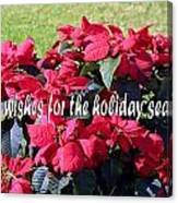 Holiday Greetings With Poinsettias Canvas Print