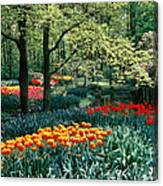 Holland Kuekenhof Garden Canvas Print