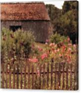 Hollyhocks And Thatched Roof Barn Canvas Print