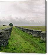 Holy Island Barriers Canvas Print