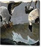 Homer: Right & Left, 1909 Canvas Print