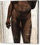 Homo Heidelbergensis Canvas Print