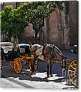 Horse And Carriage Canvas Print