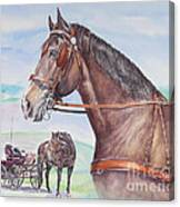 Horse And Cart Canvas Print