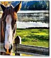 Horse At Lake Leroy Canvas Print