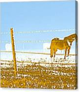 Horse Pasture Revblue Canvas Print