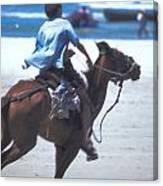 Horse Race In Brazil Canvas Print
