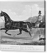 Horse Racing, C1850 Canvas Print