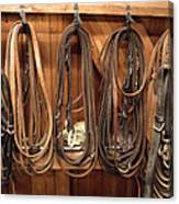 Horse Tack And Reins Canvas Print