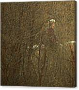 Horseback In The Garden Canvas Print