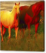 Horses Soft And Sweet Canvas Print