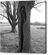 Howling Tree Canvas Print