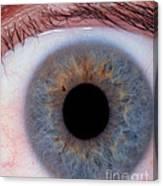 Human Eye Canvas Print