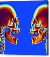 Human Skulls Canvas Print
