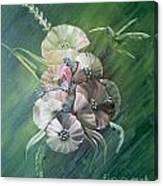Hummingbird-green Canvas Print