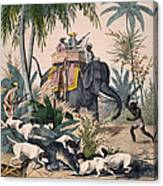 Hunting: Big Game, 1852 Canvas Print