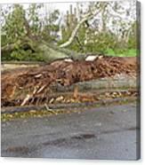 Hurricane Sandy II Canvas Print
