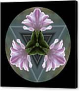 Hyacinth Kaleidoscope Canvas Print