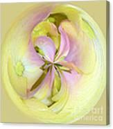 Hydrangea Circle Canvas Print