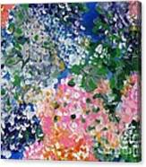 Hydrangeas I Canvas Print