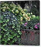Hydrangeas Salzburg Canvas Print